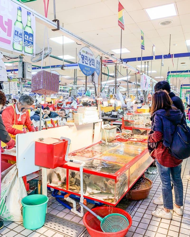 Busan Jagalchi Fish Market