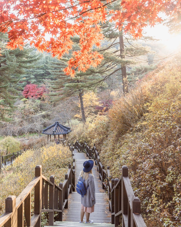 Garden of Morning Calm in Autumn